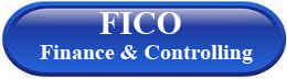 ERP FICO Finance & Controlling